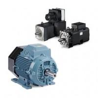 IEC Frame Motors